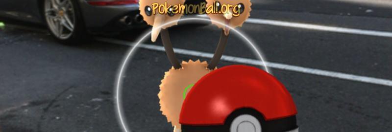 Как поймать покемона в Pokemon Go
